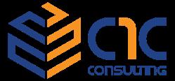 C1C Consulting Services